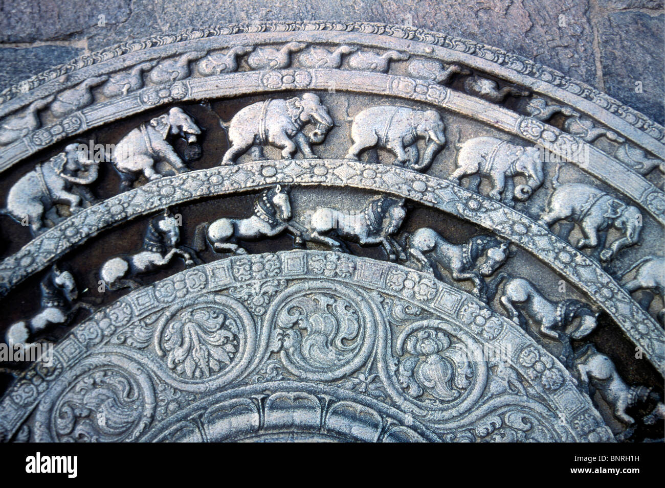 Der Mondstein schnitzen aus der alten buddhistischen Stadt Polonnaruwa, Sri Lanka Stockbild