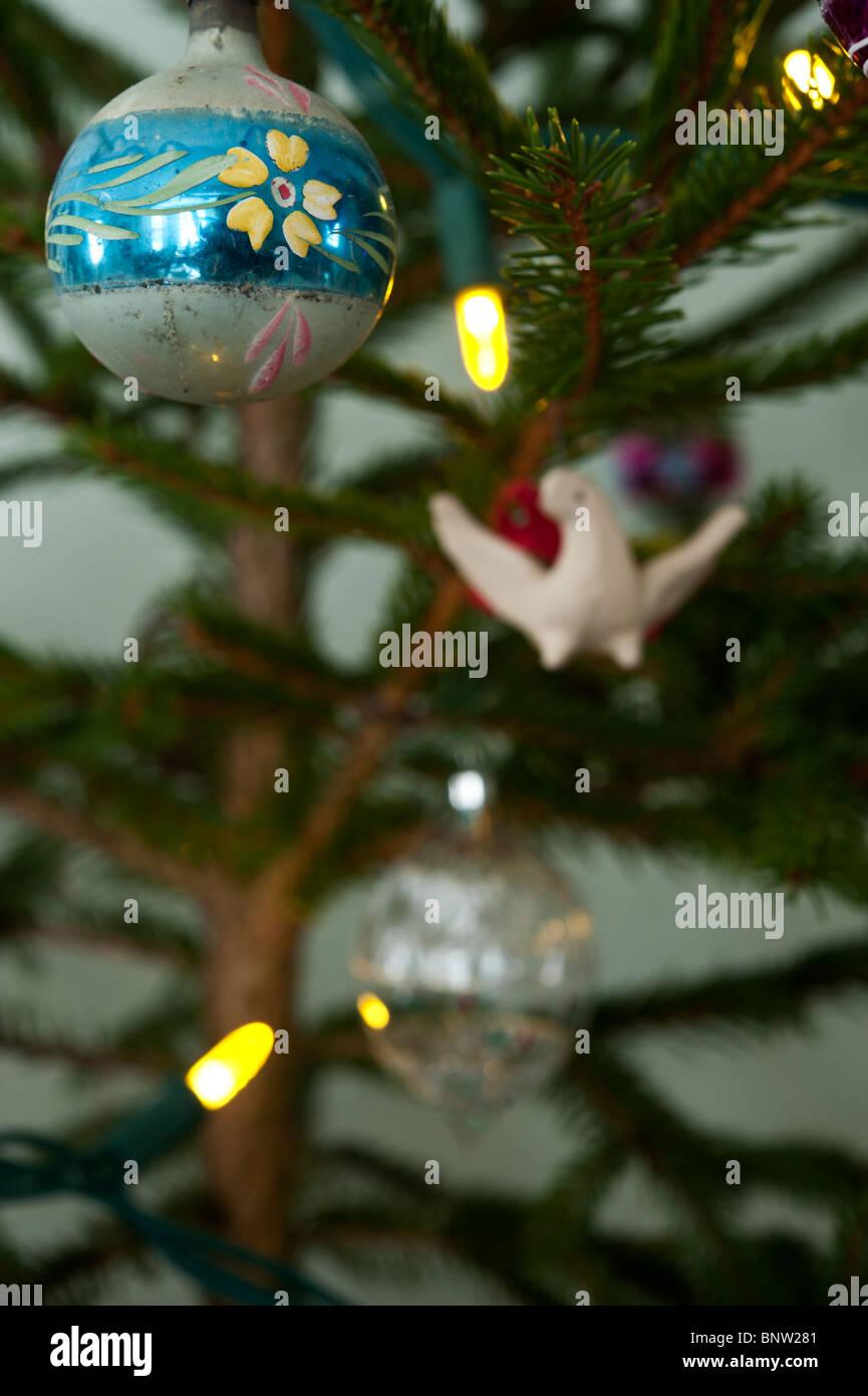 Eine antike Glas Christbaumschmuck hängt von einem Fichte Zweig mit ...