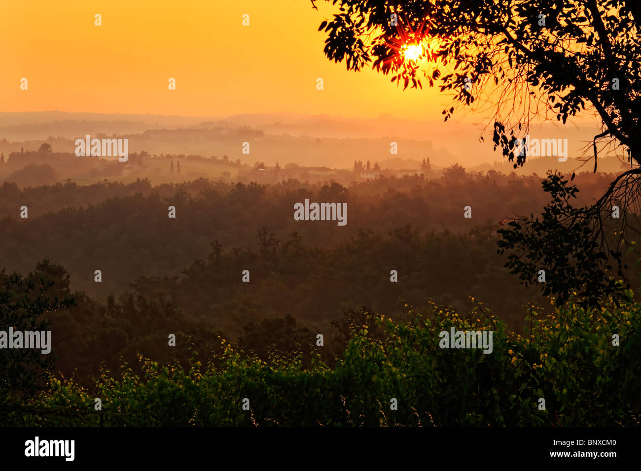 Toskanische Landschaft rund um San Gimignano, Italien bei Sonnenaufgang Stockbild