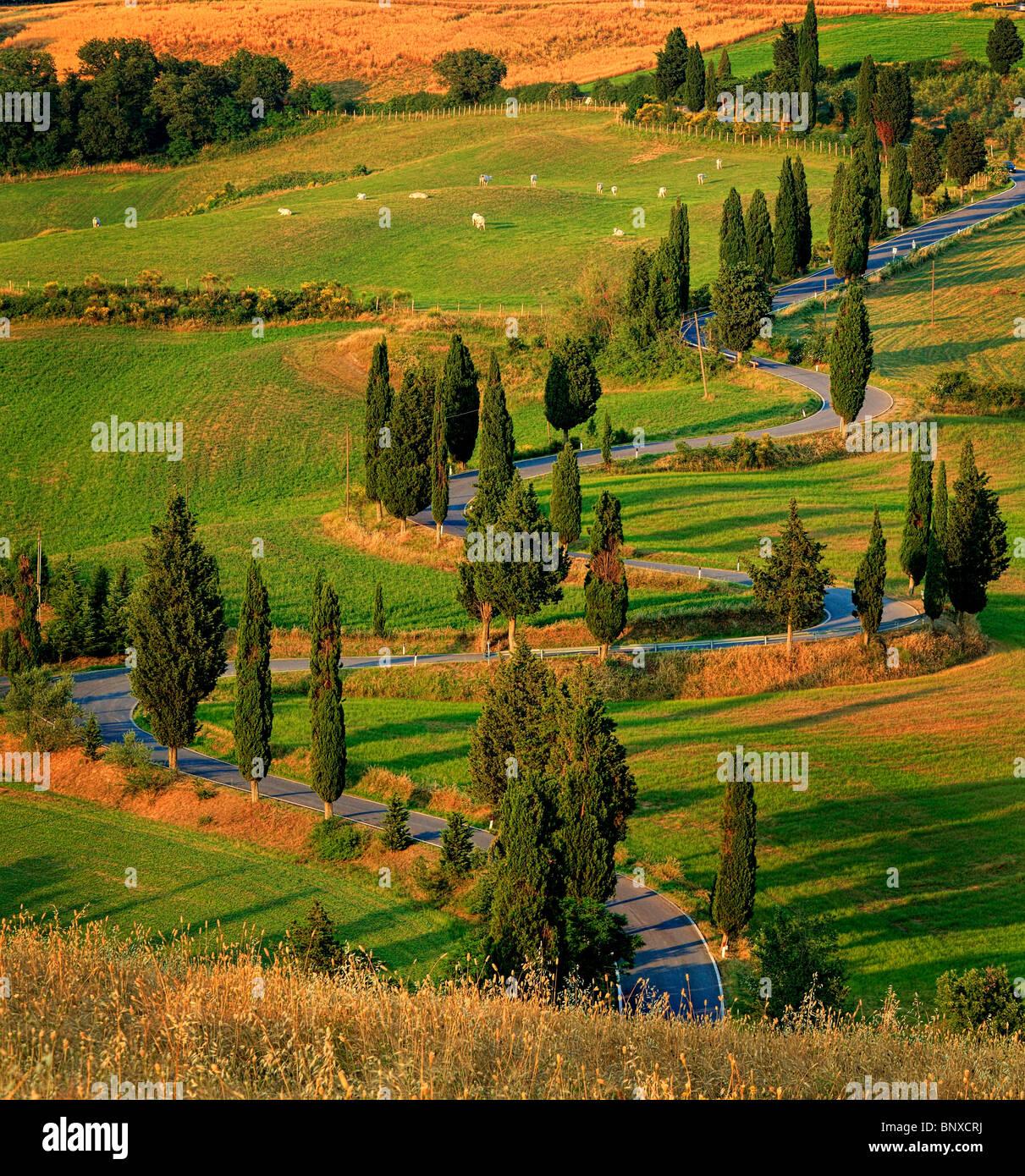 Kurvenreiche Landstraße in der Nähe der toskanischen Stadt Italiens Monticchiello Stockbild