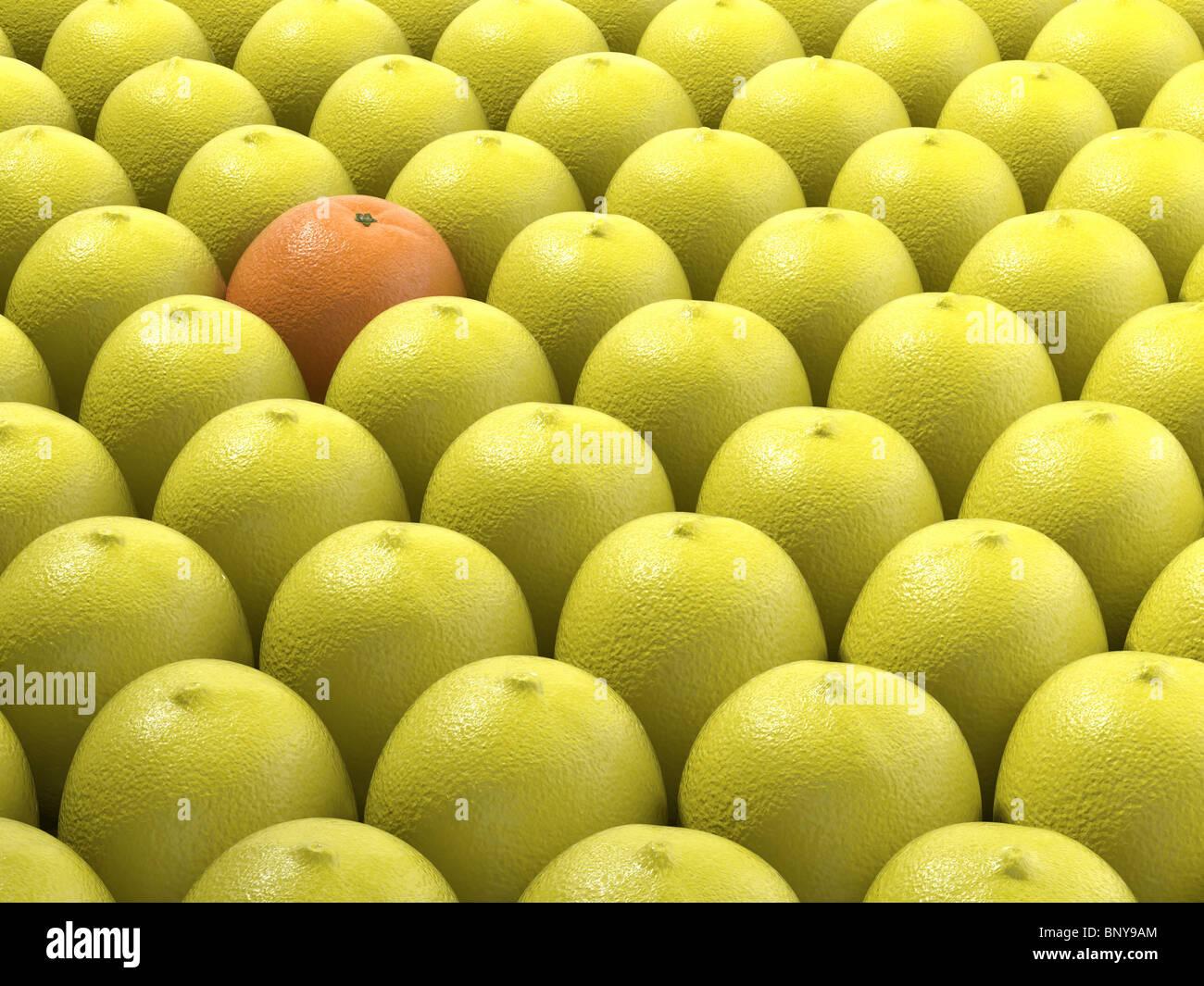 einzigartige Orange unter vielen Zitronen als Konzept für die Differenzierung Stockbild