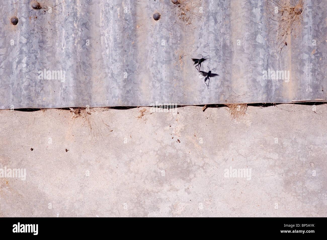 Metall und Beton Stockbild