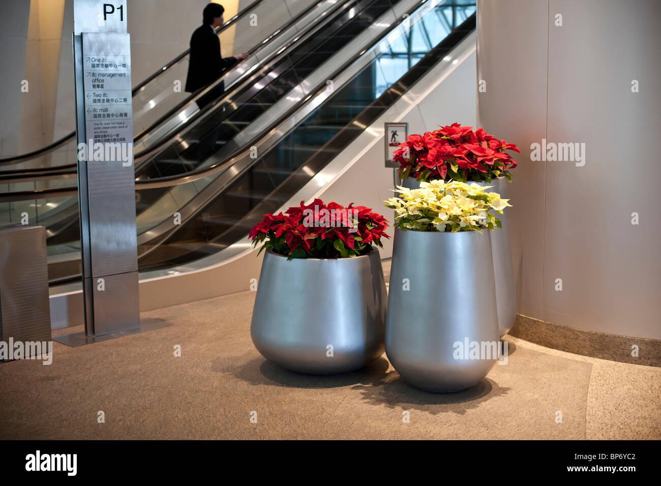 Moderne Blumentöpfe moderne blumentöpfe in einkaufszentren und bürogebäude im zentrum