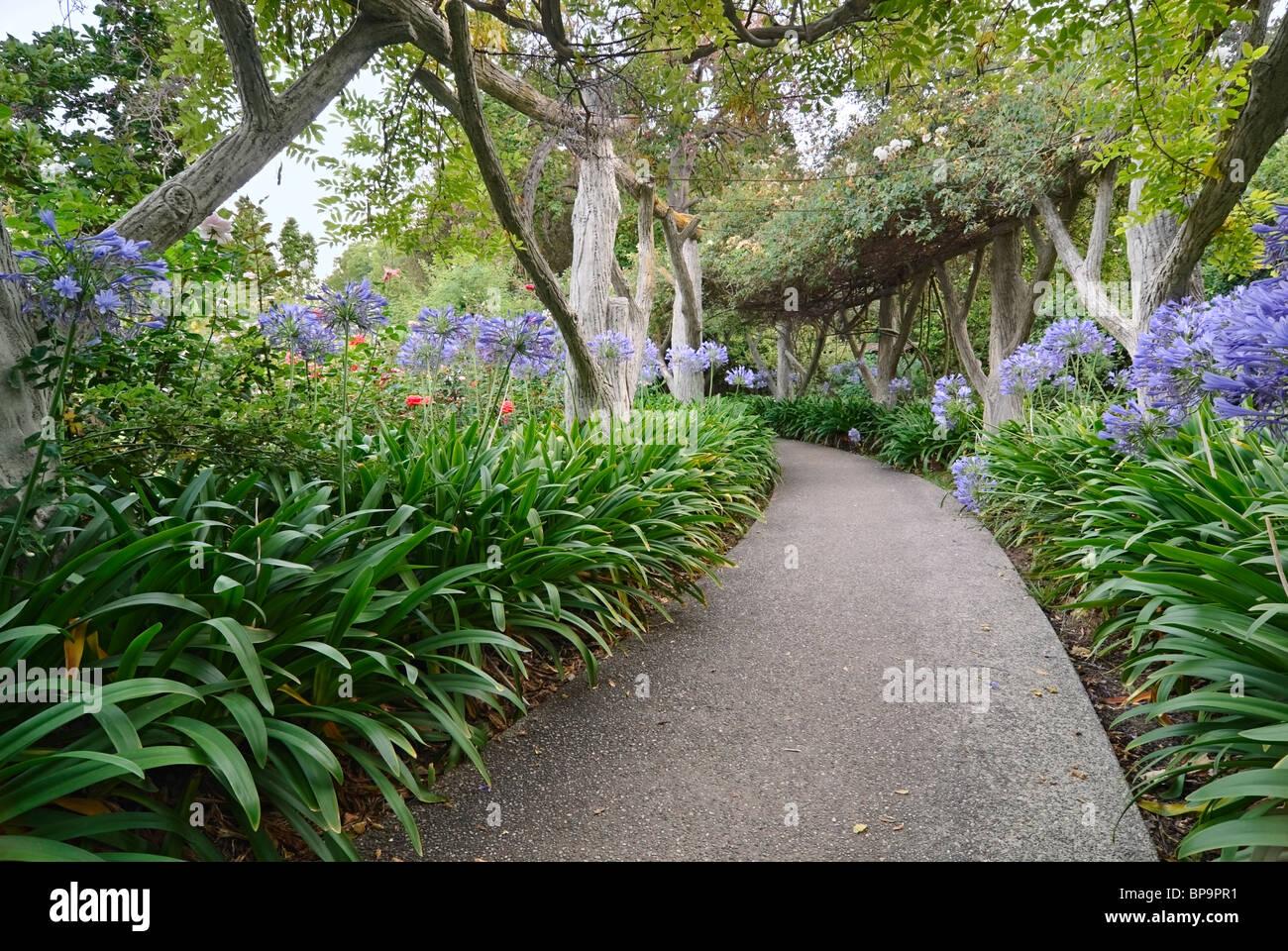Schöner Gehweg in Richtung einen üppigen Garten. Stockbild