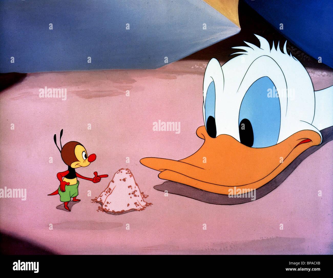 ANT, Donald Duck, WALT DISNEY CARTOON CHARAKTER, 1945 Stockbild