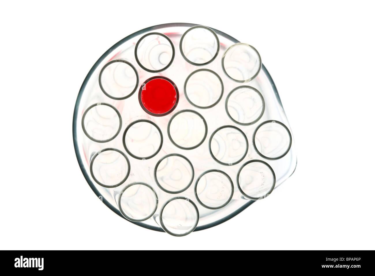 Chemikalien in Reagenzgläser. Flüssige Chemikalien in einem chemischen Labor. Stockbild
