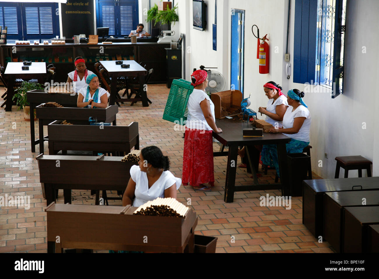 Frauen, die Zigarren in der Dannemann-Fabrik in Sao Felix, Bahia, Brasilien. Stockbild