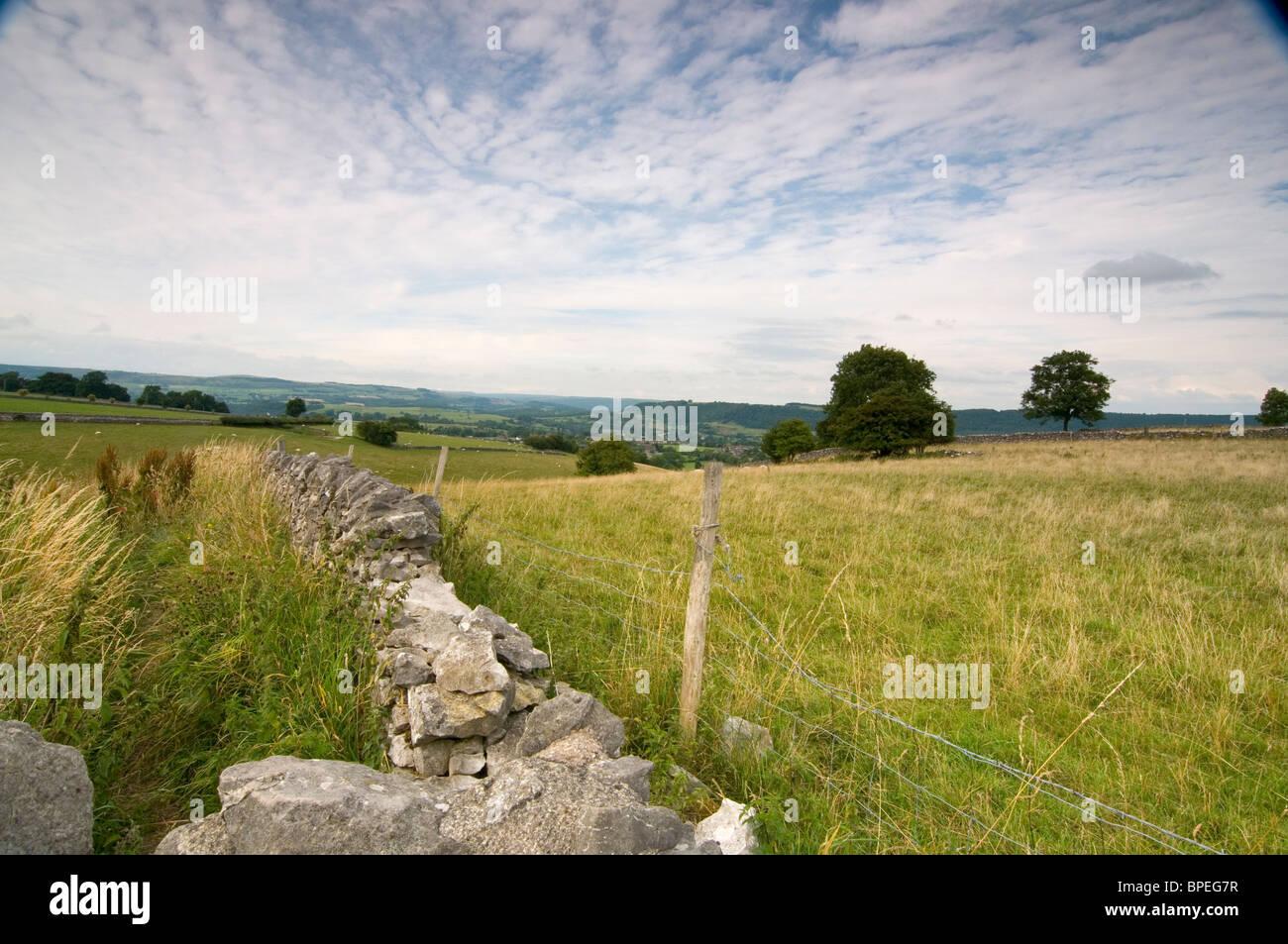Trockene Stein Mauer Und Stacheldraht Zaun Und Ein Feld In Derbyshire Peak  District. Bäume In