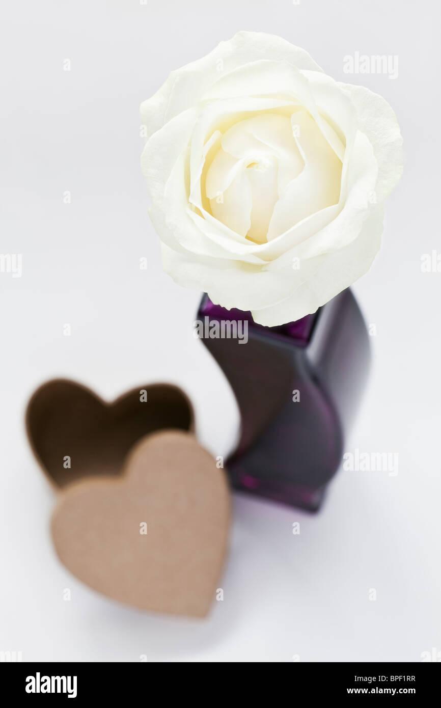 Lila Herz Blumen Stockfotos Lila Herz Blumen Bilder Alamy
