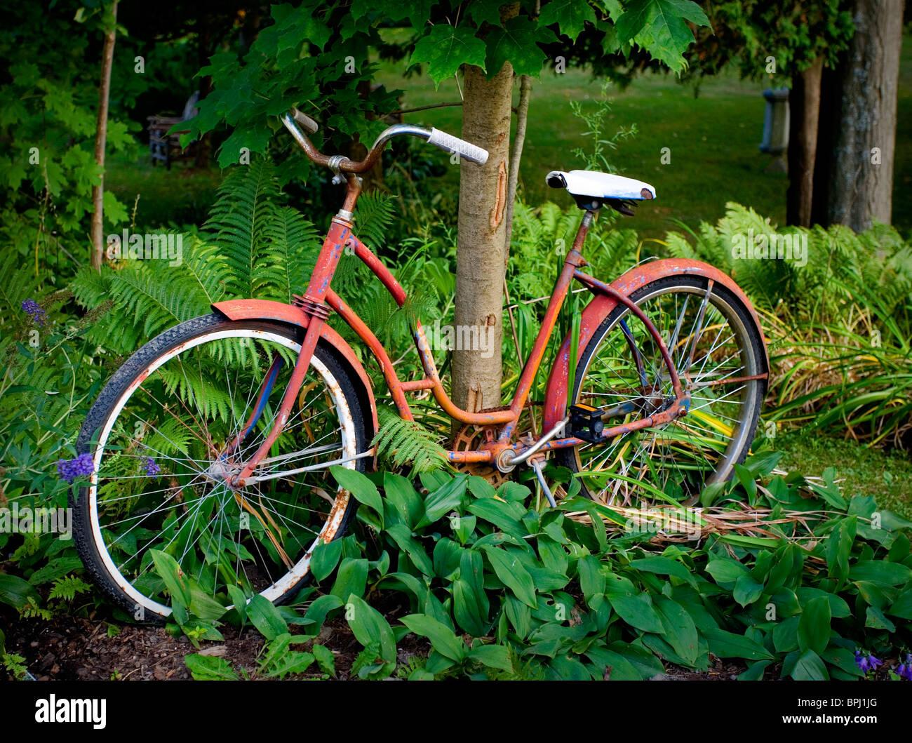 Rotes Fahrrad an Baum gelehnt Stockbild