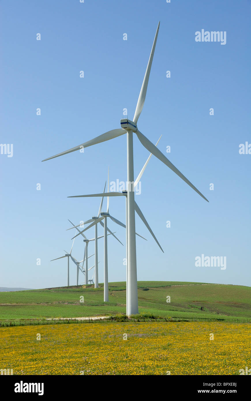 Windpark Ökostrom Spanien wilde Blumen Windenergie-Industrie Stockbild