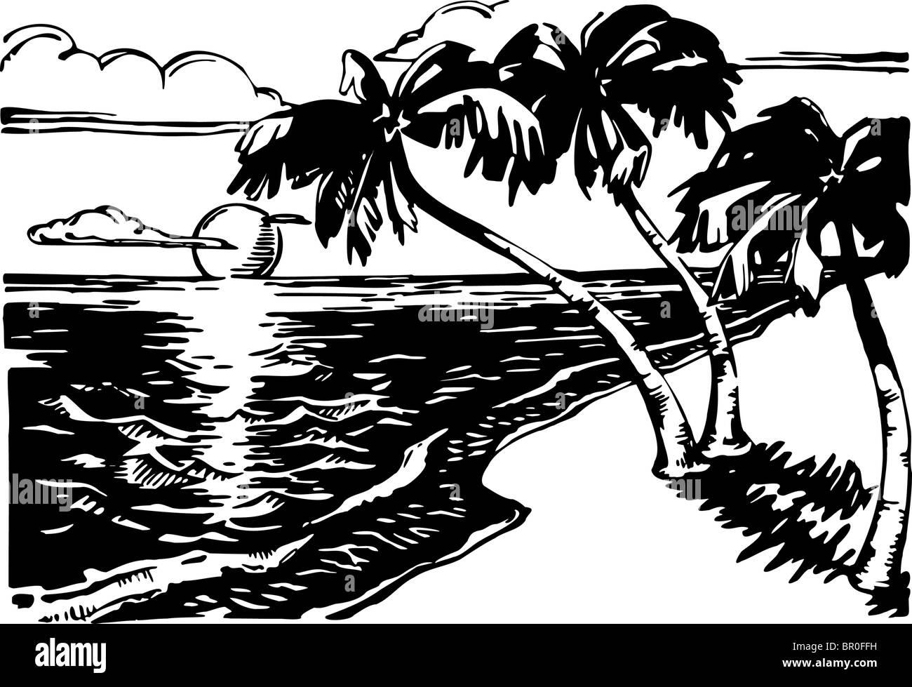 Ein Blak und weißen Bild der Sandstrand mit Palmen Stockbild