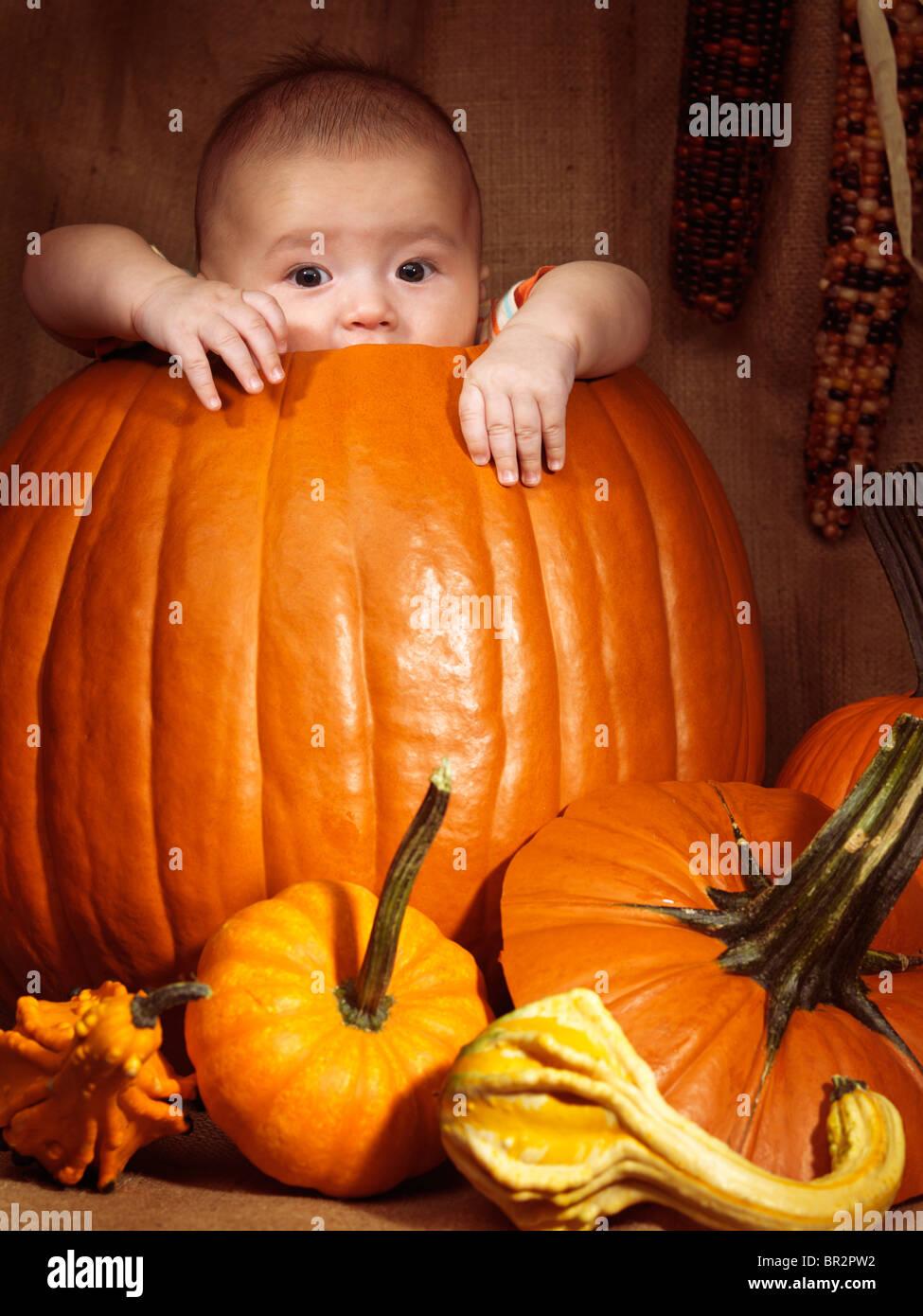Baby Junge sitzt in einem großen Kürbis. Herbst Ferien Thanksgiving und Halloween humorvollen künstlerischen Stillleben. Stockfoto