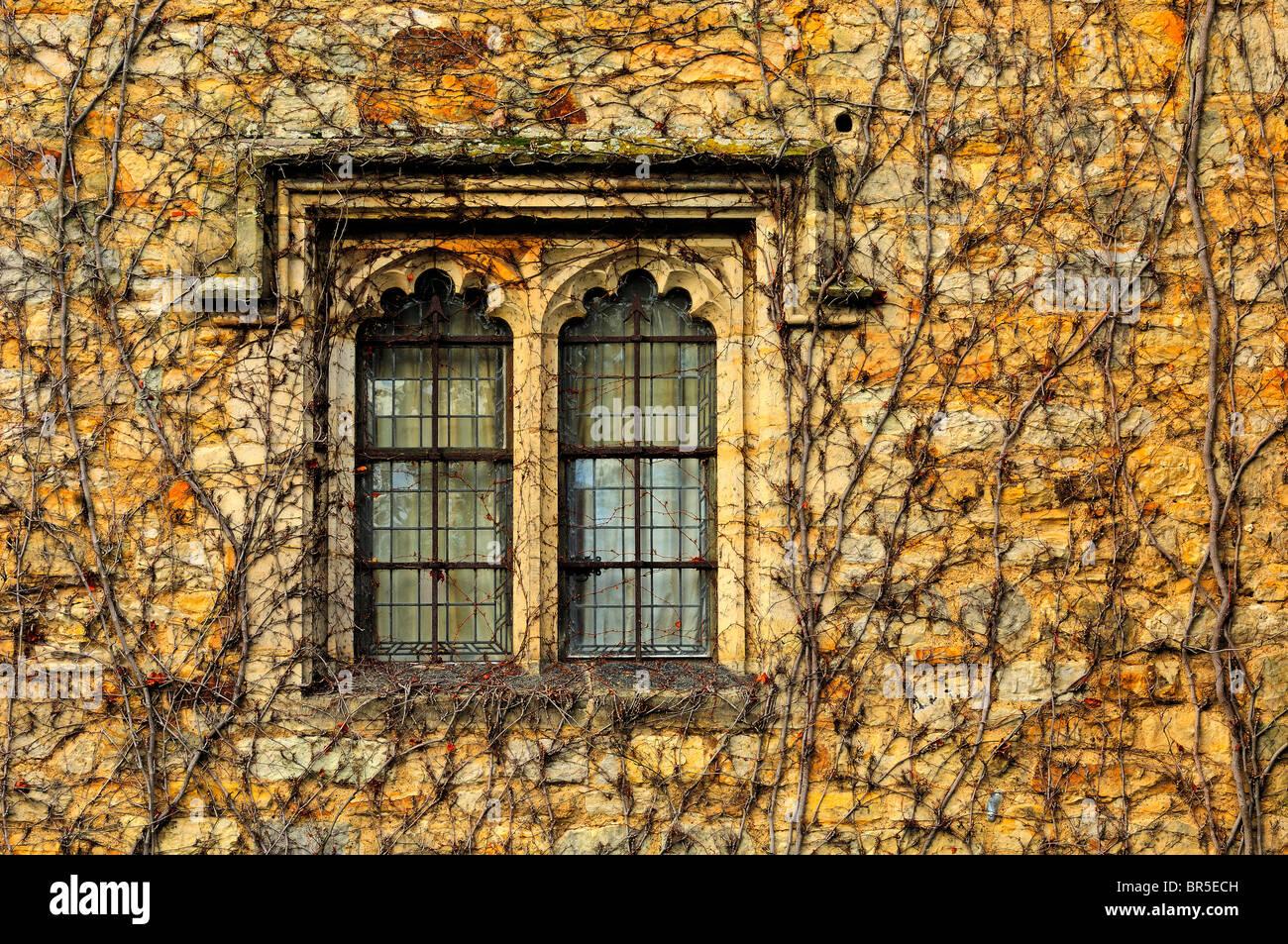 window gothic style stockfotos window gothic style bilder alamy. Black Bedroom Furniture Sets. Home Design Ideas