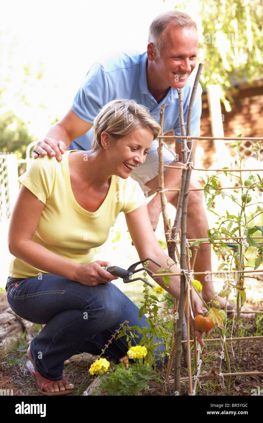 Paar im Garten entspannen Stockfoto
