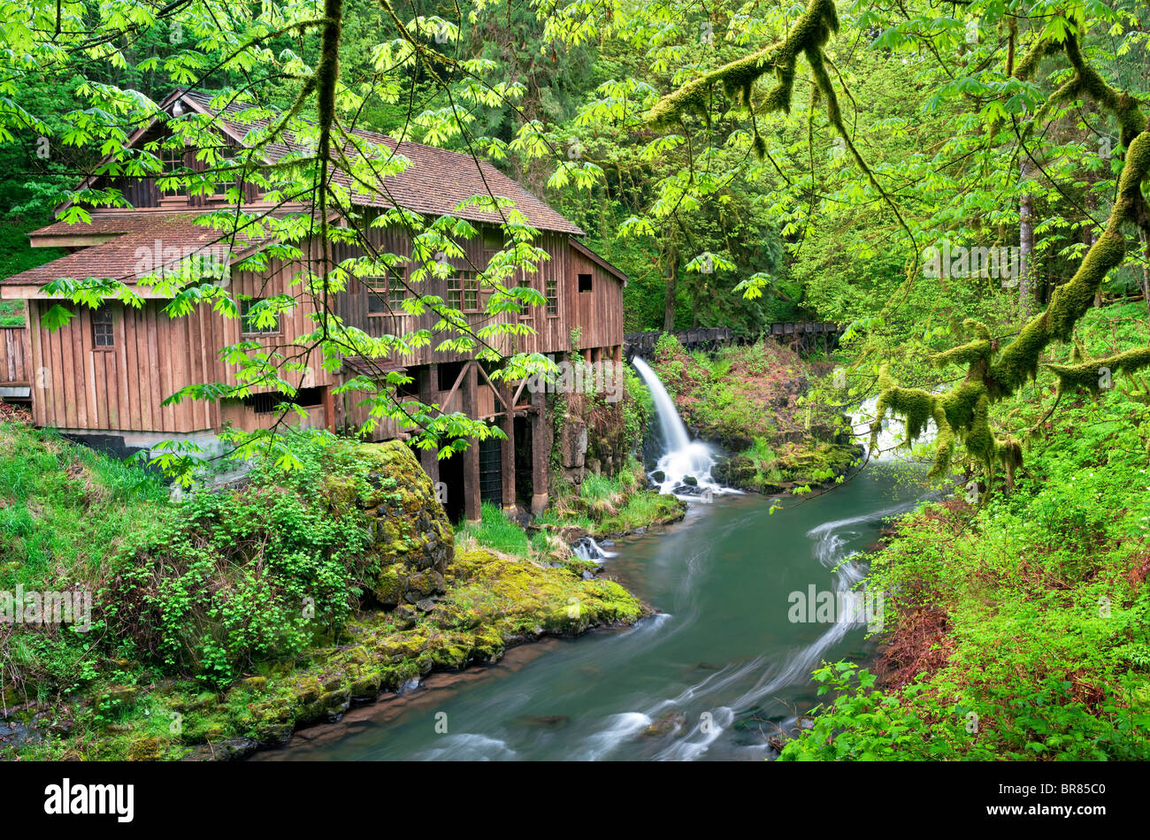 Cedar Creek Grist Mill im Frühjahr. Woodland, Washington Stockbild