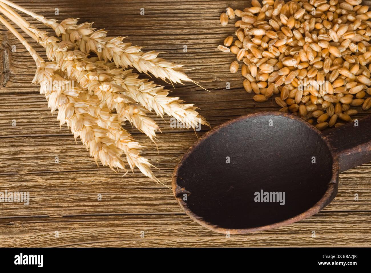 Weizen, Samen und Holzlöffel Stockbild