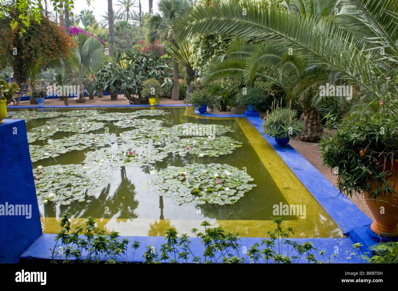 Jardin Majorelle Marrakesch Marokko Nordafrika Stockfoto Bild