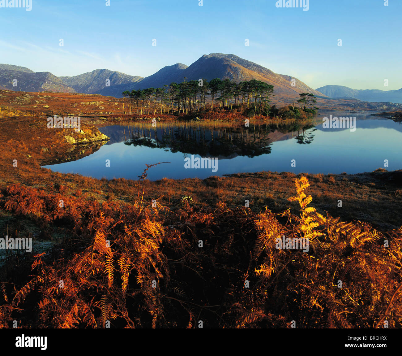 Zwölf Bens, Derryclare Lough, Connemara, Co. Galway, Irland; Irische Landschaft Stockbild