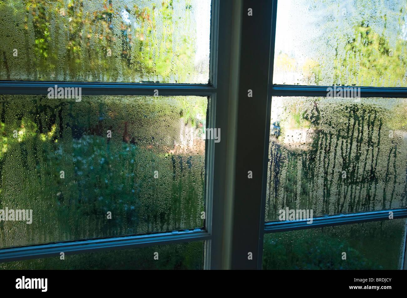 Kondenswasser läuft einem einfach verglasten Fenster.  (Tiefenschärfe) Stockbild