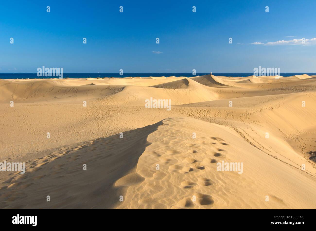 Dünen von Maspalomas, Gran Canaria, Kanarische Inseln, Spanien Stockbild