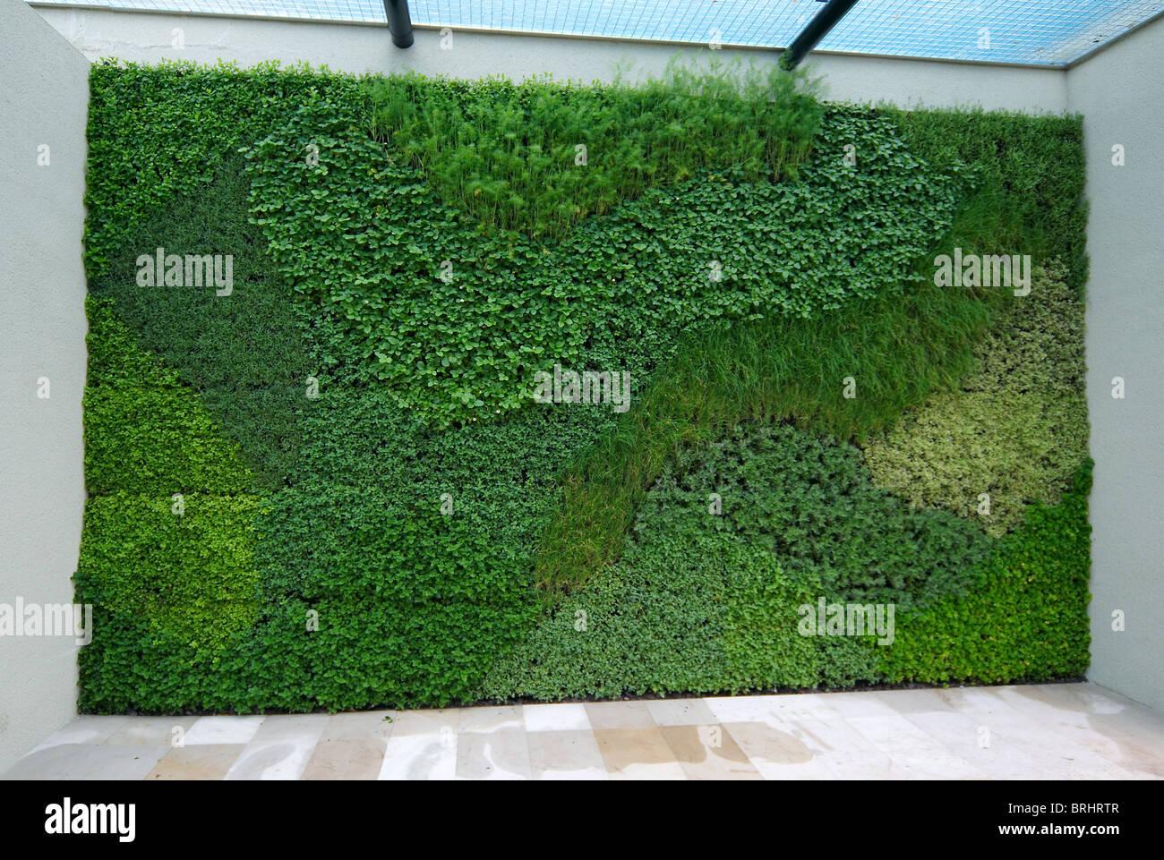 Künstlerisch Wandgarten Innen Ideen Von Eine Dekorative Vertikale Wand Garten Kräuter In