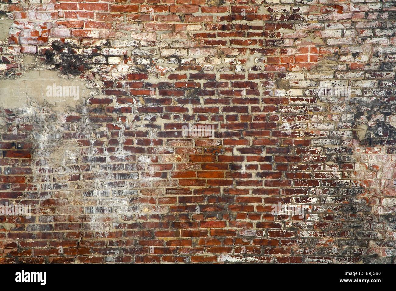 Ziegelmauer Stockbild