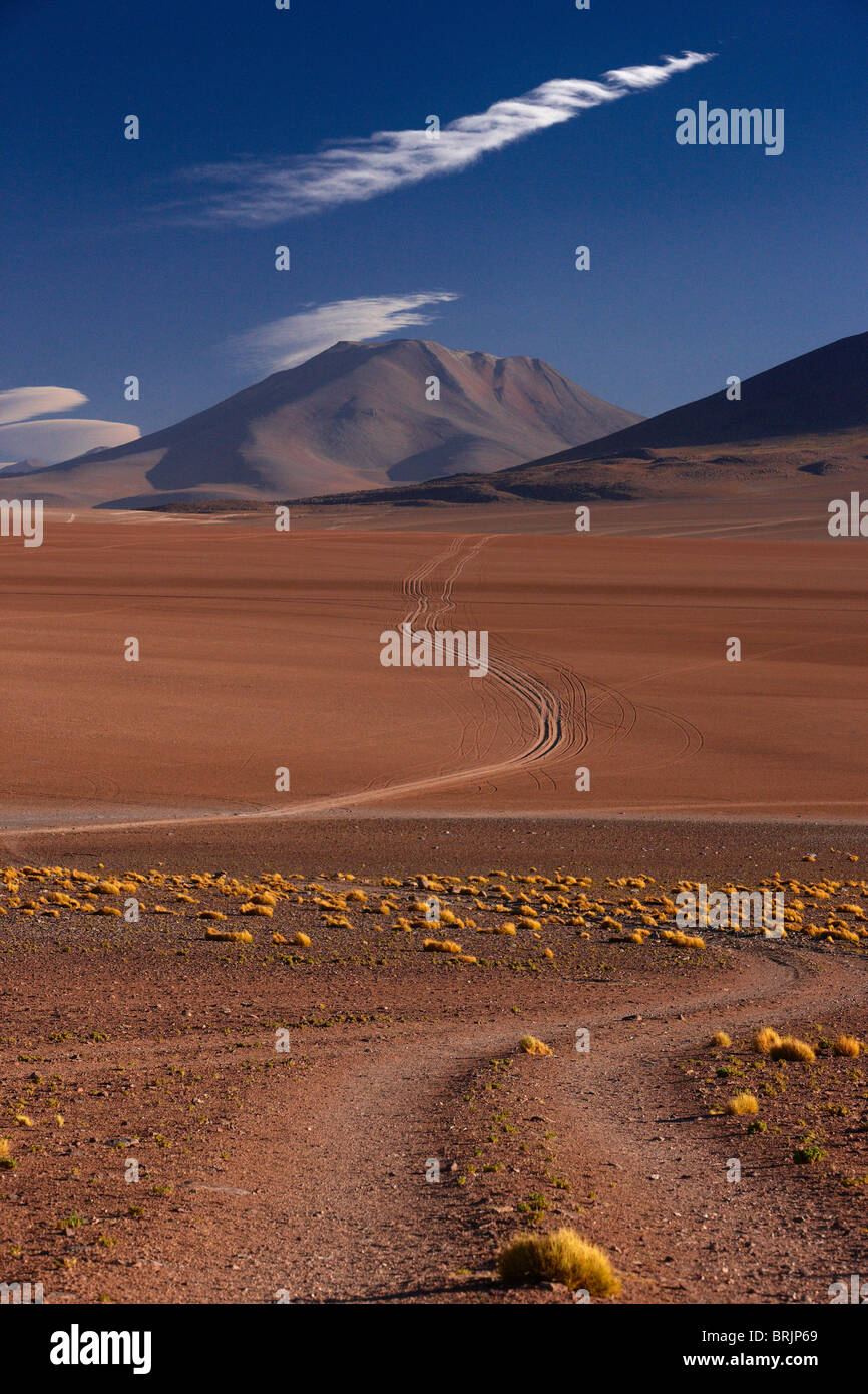 der Weg zum Ojo de Perdiz, hoch oben auf dem Altiplano in Bolivien Stockbild