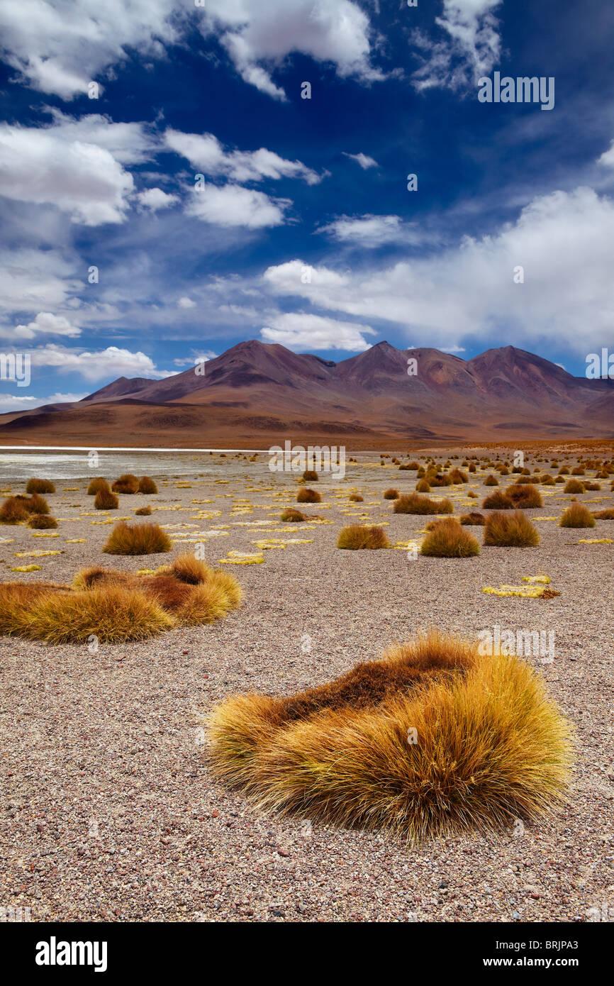 die abgelegene Region der Hochwüste, Altiplano und Vulkane in der Nähe von Tapaquilcha, Bolivien Stockbild
