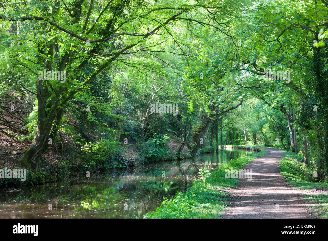 Monmouthshire und Brecon Canal in der Nähe von Llanhamlach, Brecon Beacons National Park, Powys, Wales. Stockbild