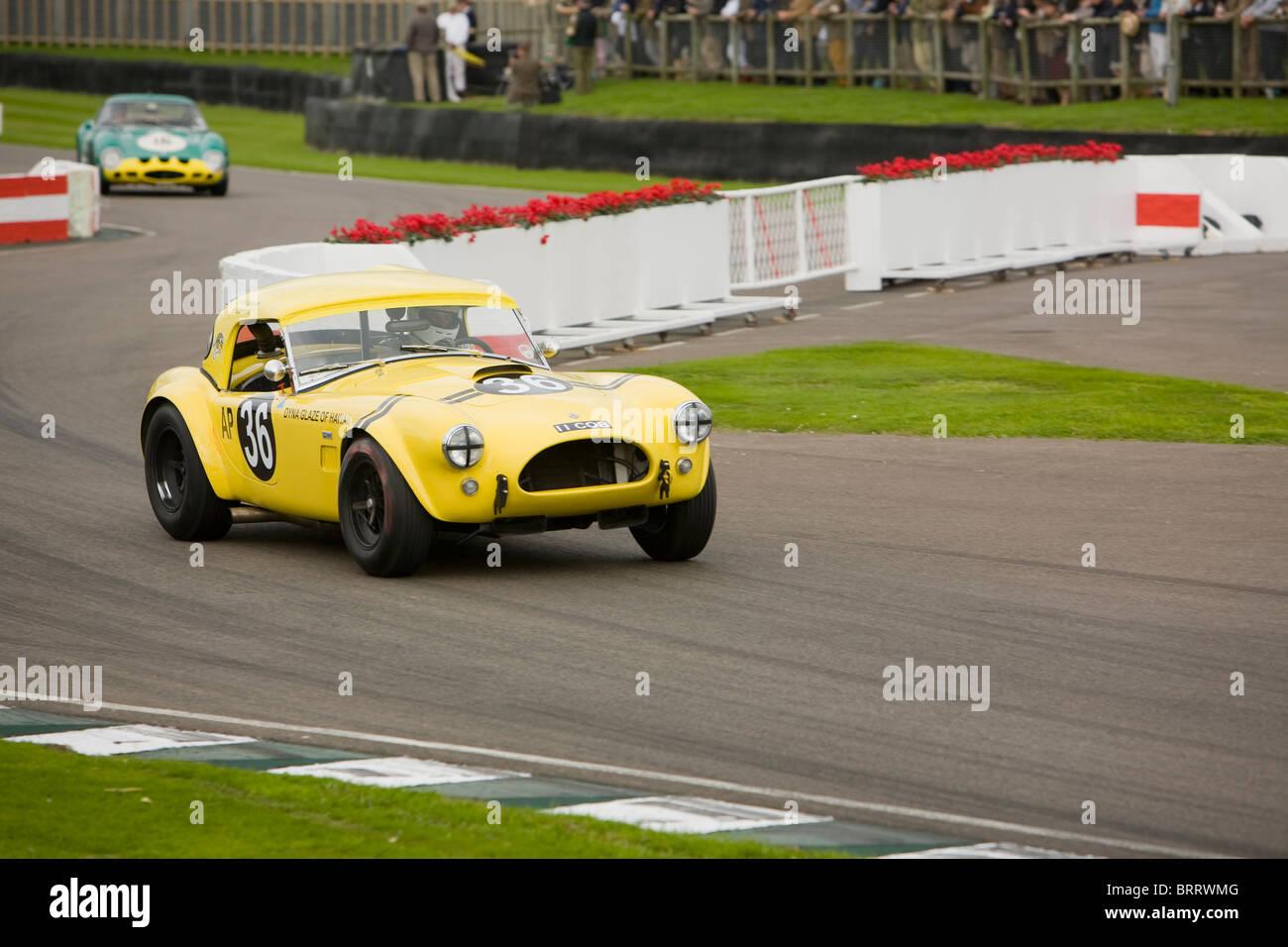 AC Cobra Rennen in Goodwood Revival 2010 Stockbild