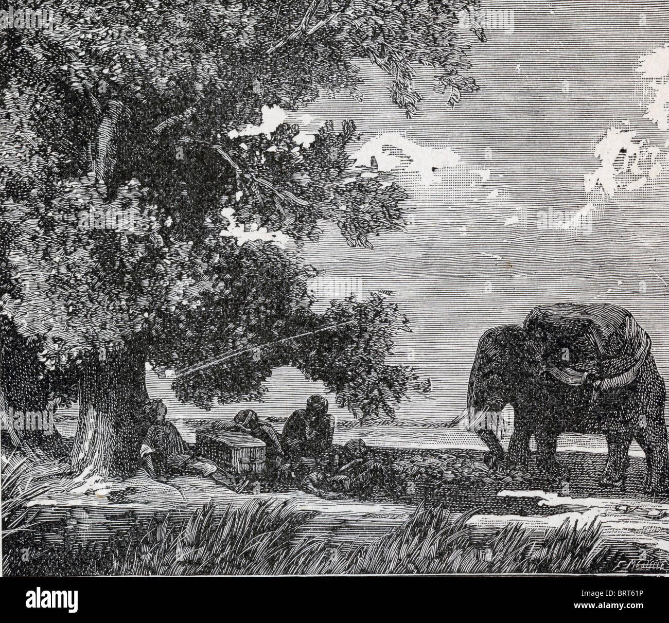 100 Jahre alte Lithographie des Elefanten Stockbild