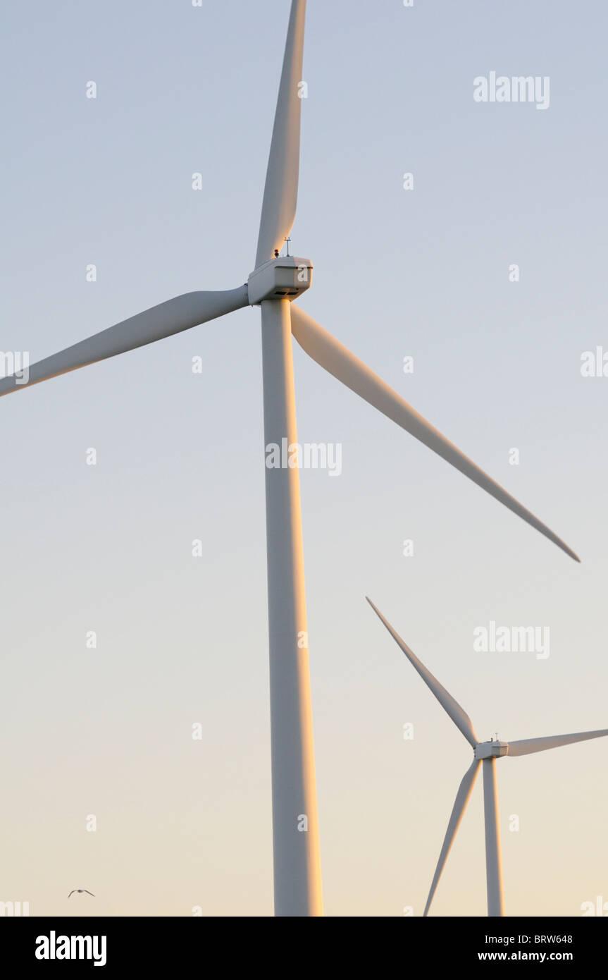 Windkraftanlagen in der Morgendämmerung mit kleinen Vogel (Möwe) im Flug Stockbild