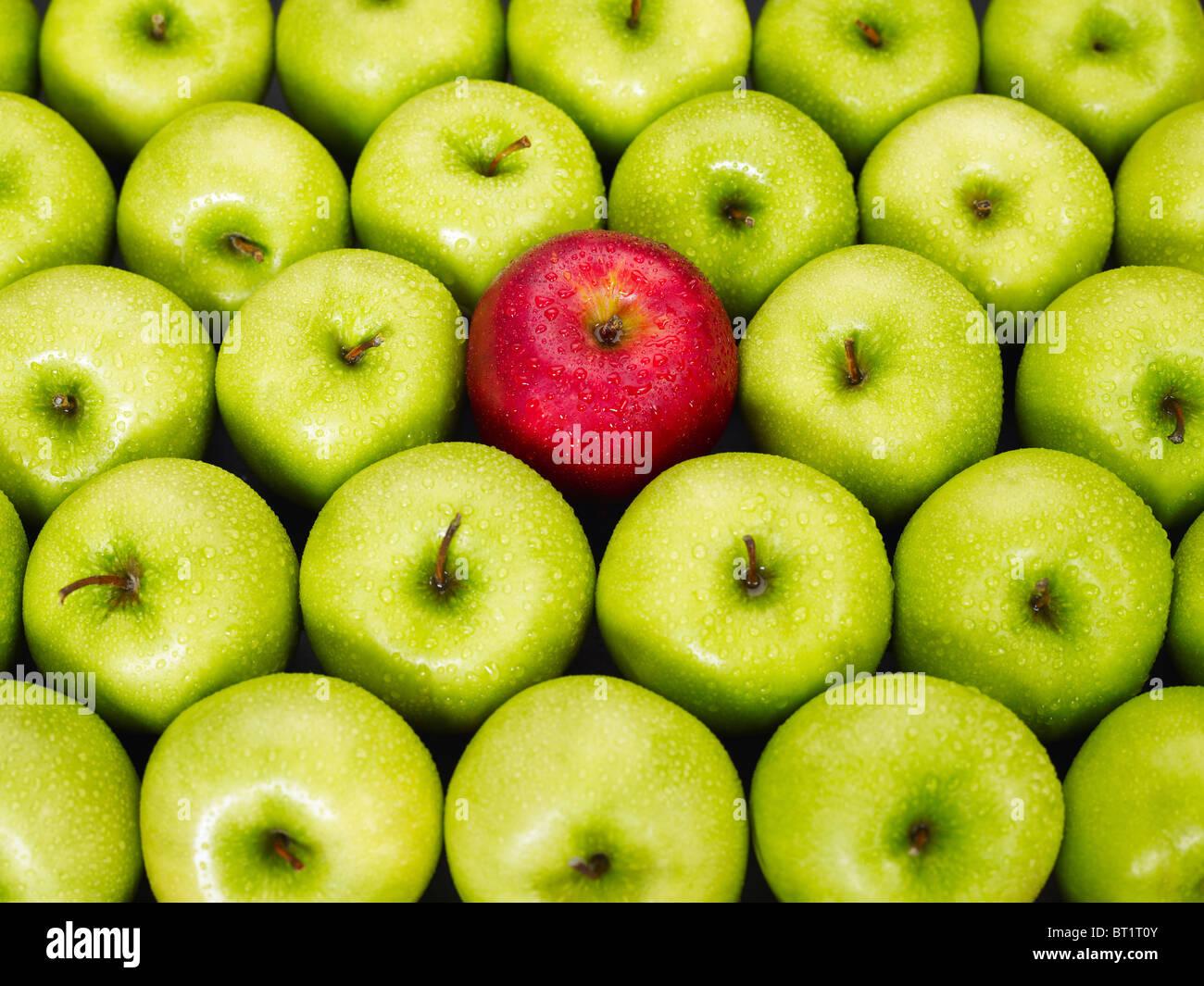 roter Apfel stehend aus Haufen von grünen Äpfeln Stockbild