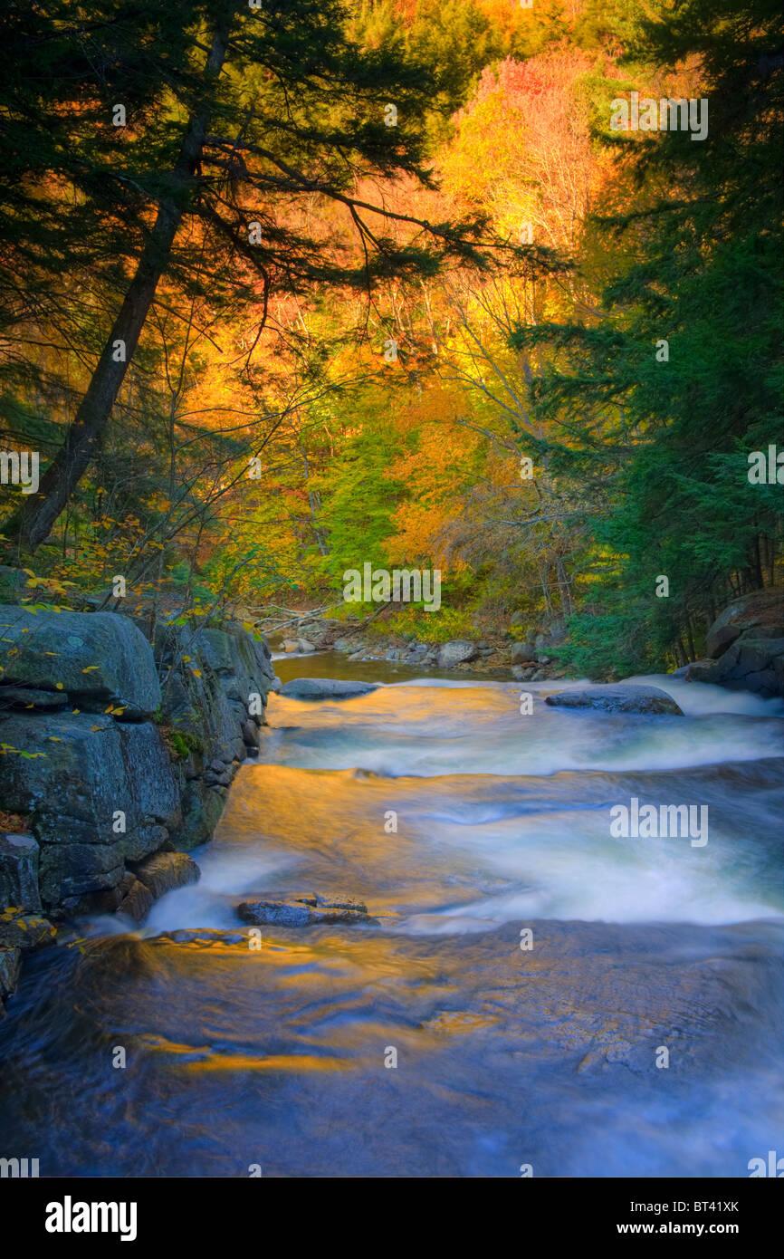Mieter Creek Falls, Adirondacks, Hamilton County, Bundesstaat New York Stockbild