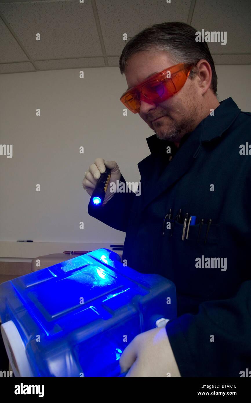 Fingerabdruck-Analyst mit einer farbigen Lichtquelle, um Fingerabdrücke auf forensische Beweise in einem Verbrechen Stockbild