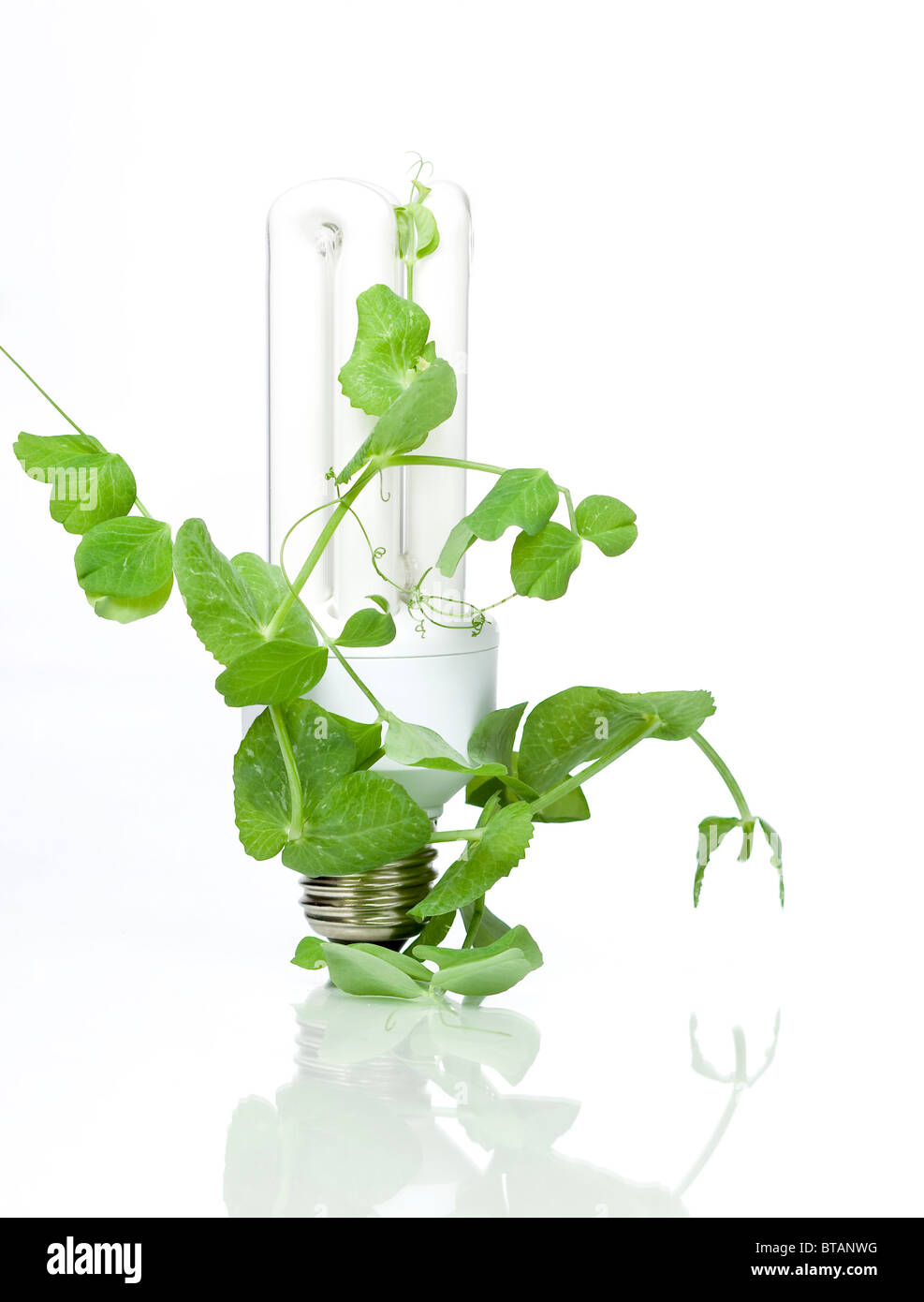 grüne Energie Stockbild