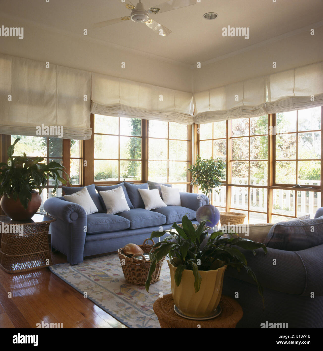 Weiß auf blauem Sofa vor französische Fenster mit weißen Vorhänge im ...