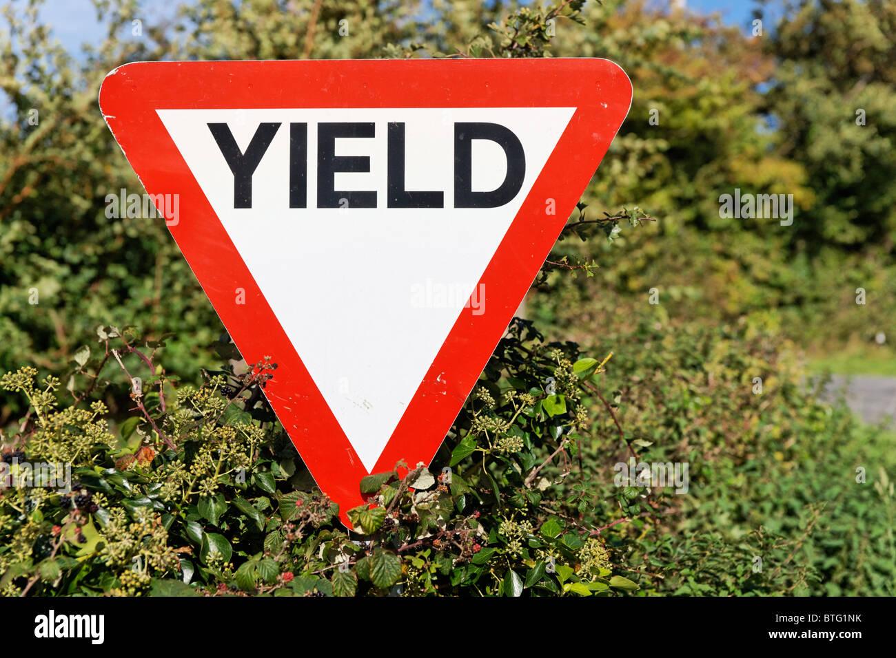 Führen Sie Straßenschild in Irland. Stockbild