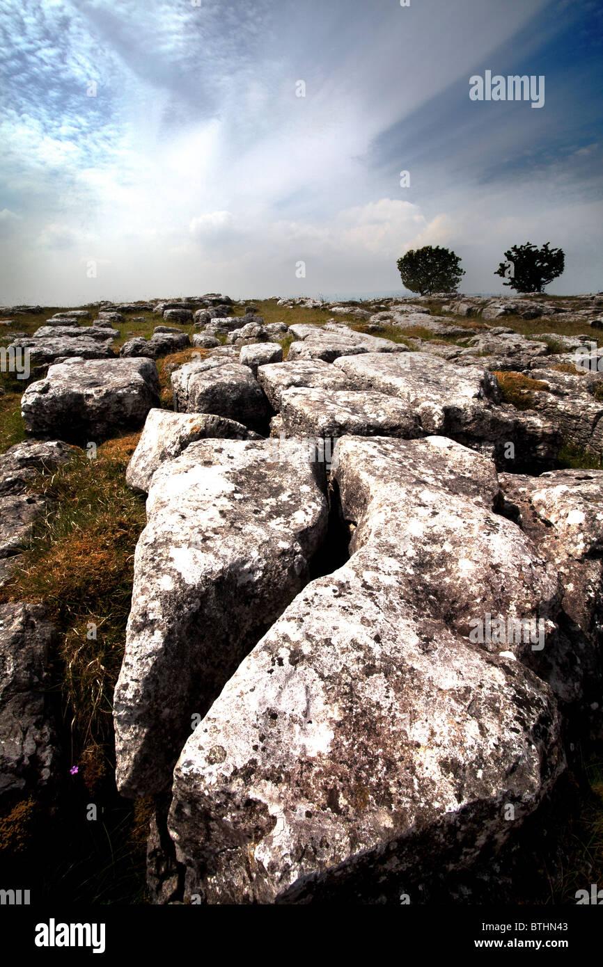 Die Yorkshire Kalkstein Bürgersteige in der Nähe von Malham in Yorkshire Dales Stockbild