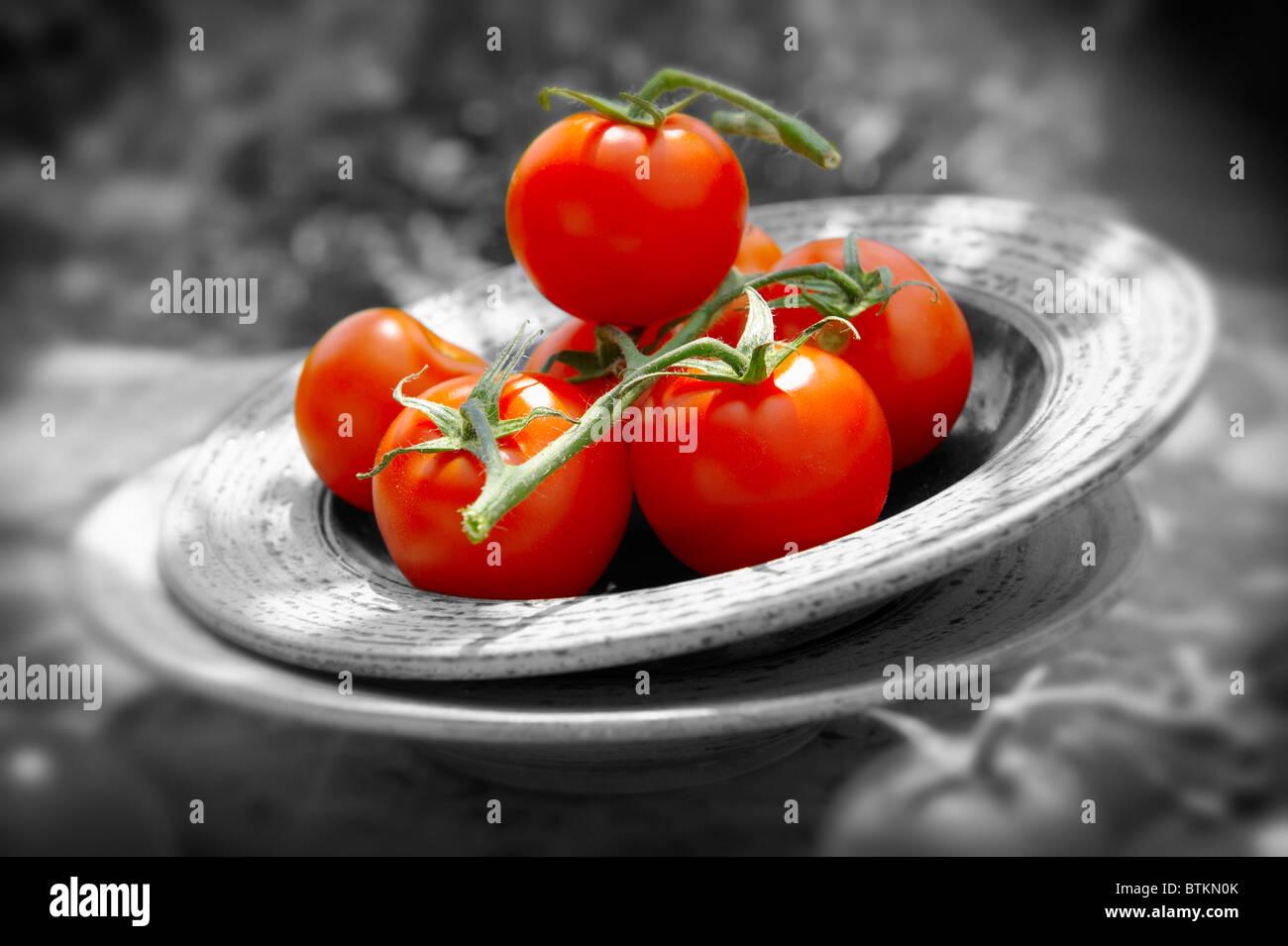 Frische ganze Tomaten am Rebstock Stockbild