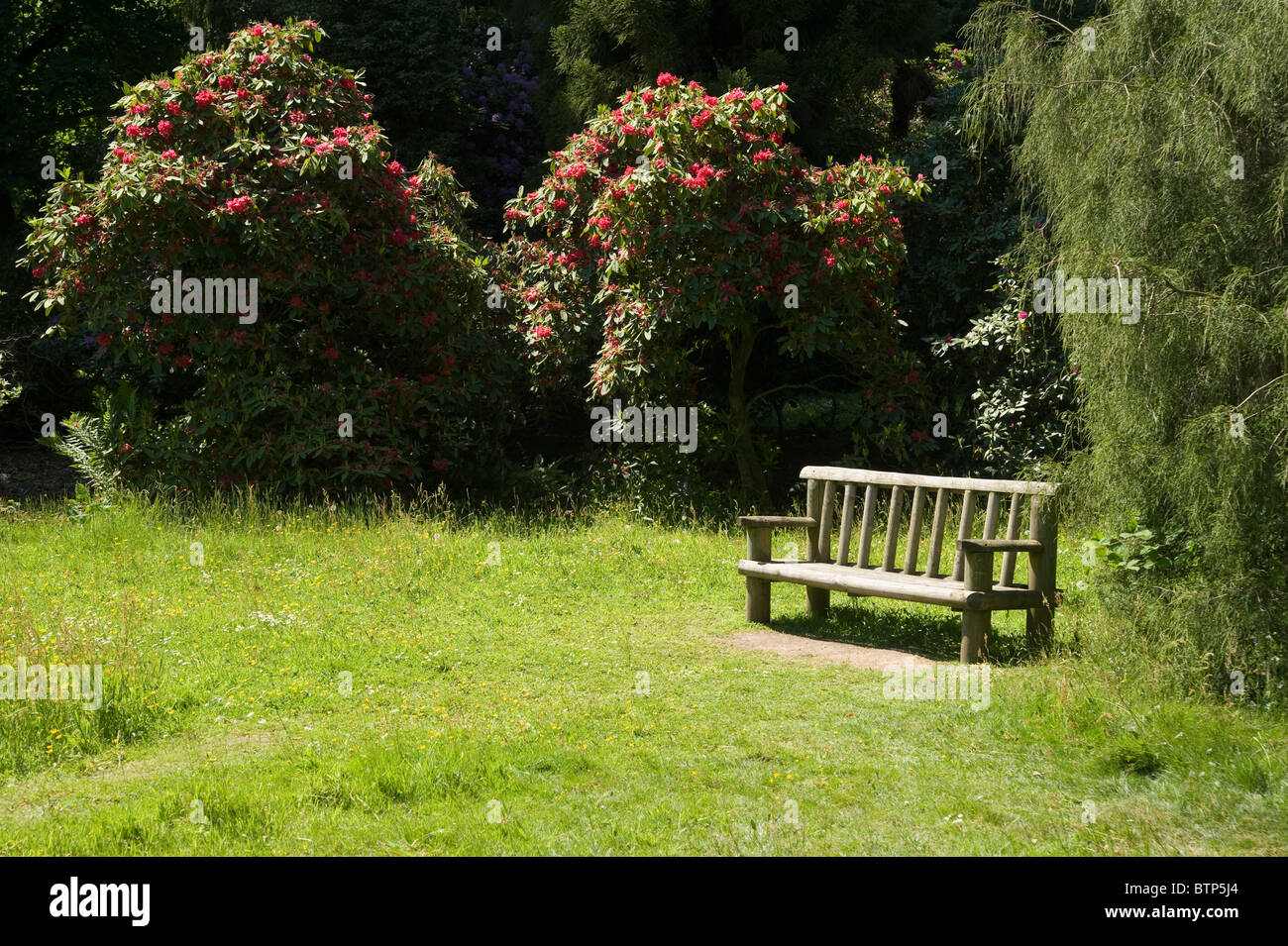 Bank im Garten, Wiltshire, UK. Stockbild