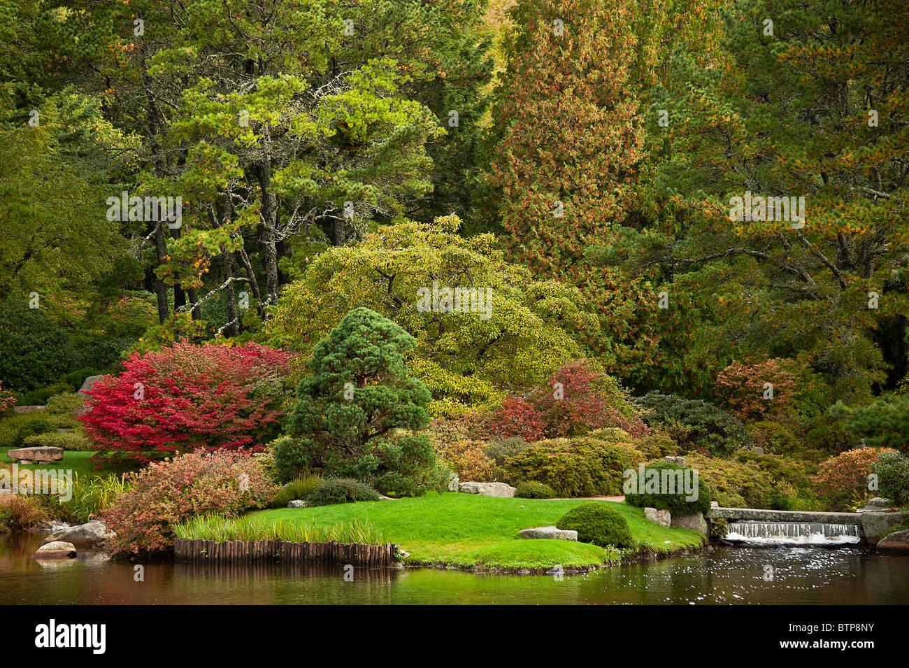 Asticou Azalea Garden, Öffentlichkeit, Northeast Harbor, Maine, USA Stockbild