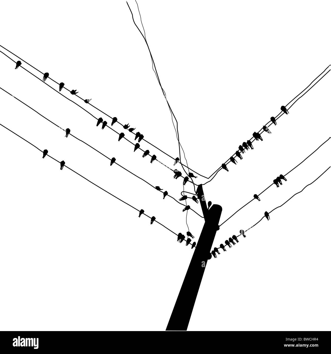 Illustration Birds On Wire Stockfotos & Illustration Birds On Wire ...