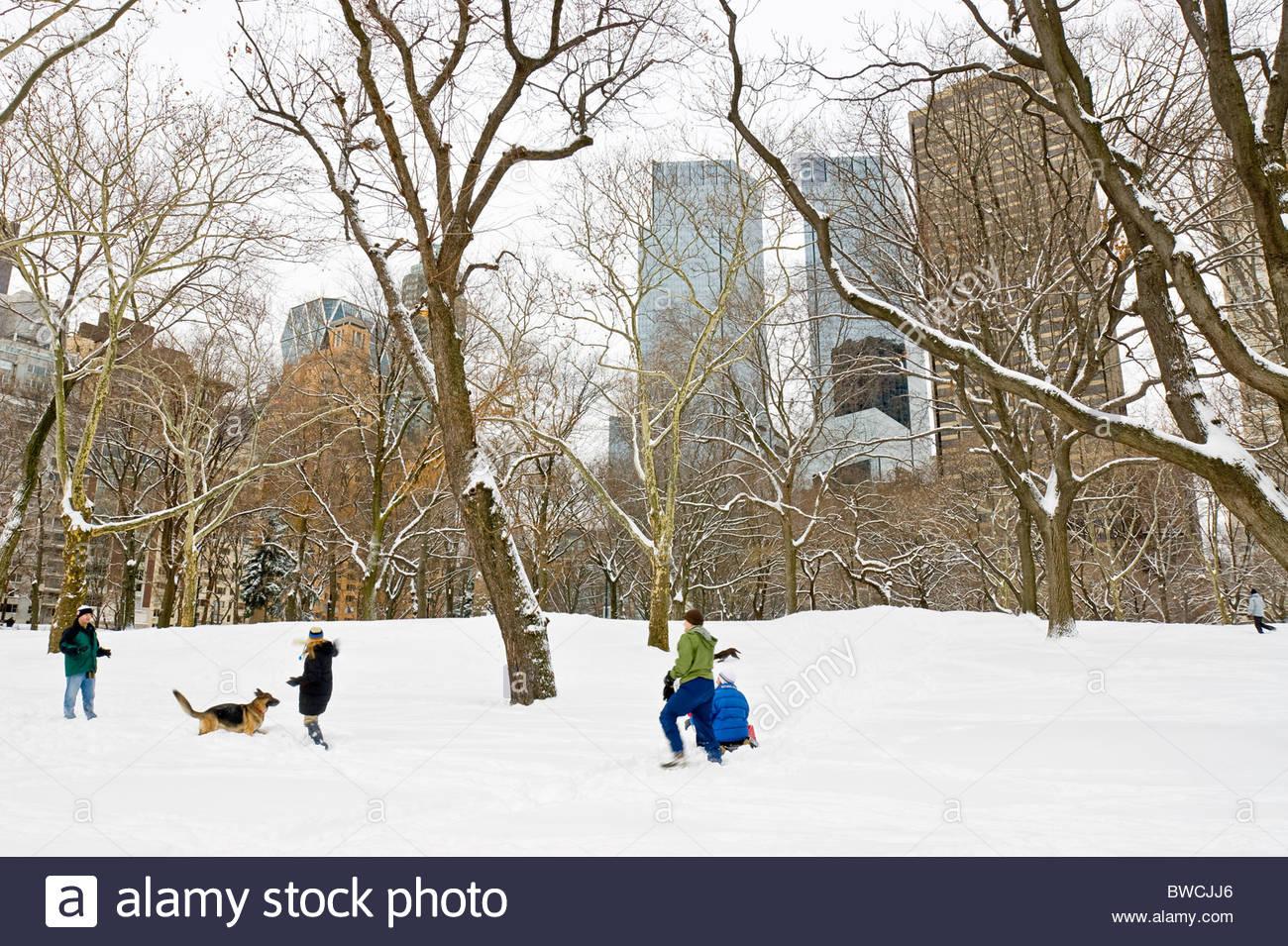 Menschen Spielen im Schnee, Winter im Central Park Stockbild
