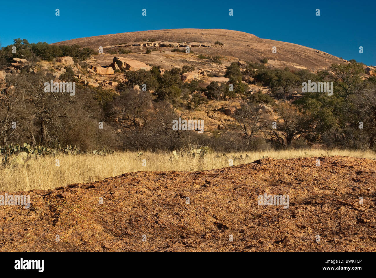 Hauptkuppel enchanted Rock State Natural Area, im Gebirge in der Nähe von Fredericksburg, Texas, USA Stockbild
