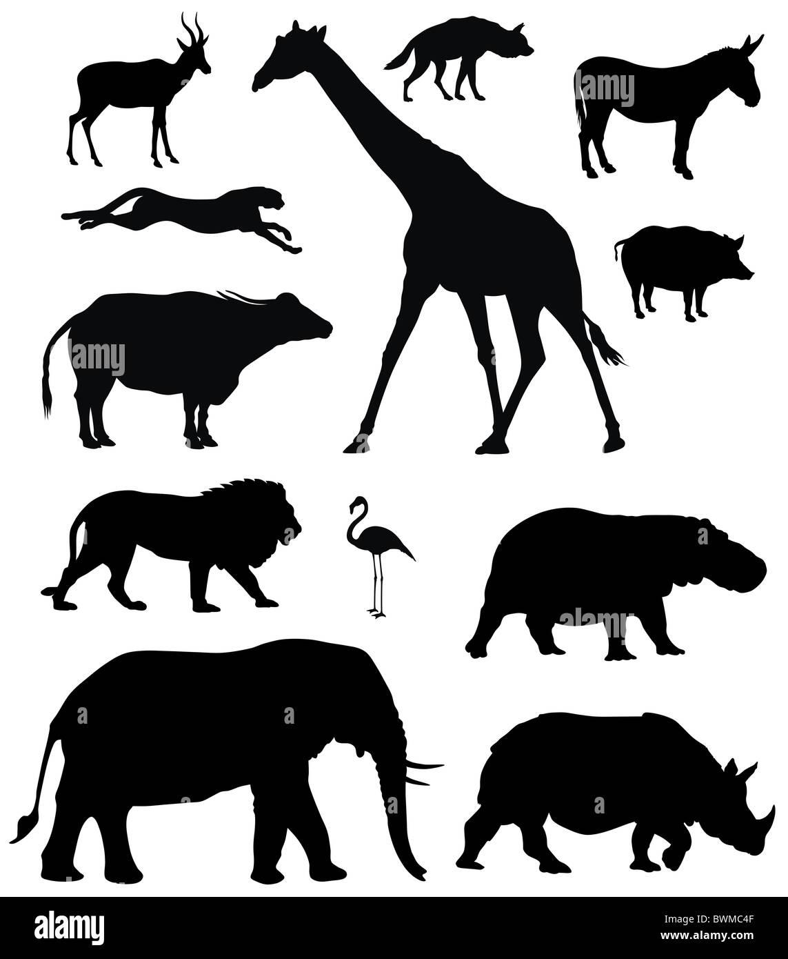Darstellung der afrikanischen Tiere Silhouetten Stockbild