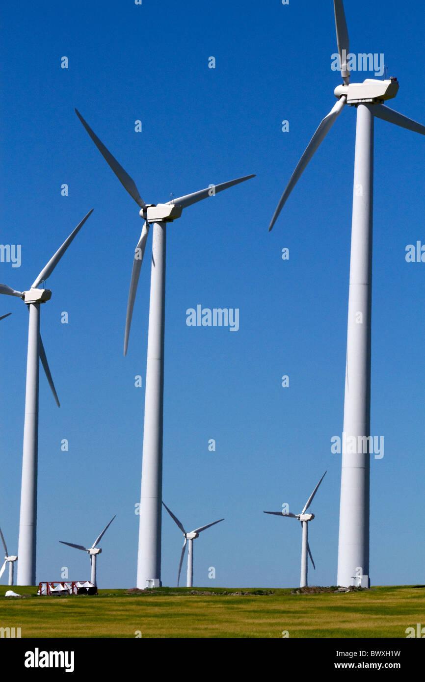 Der Condon-Windpark in der Nähe der Stadt Condon in Zentral-Oregon, USA. Stockbild
