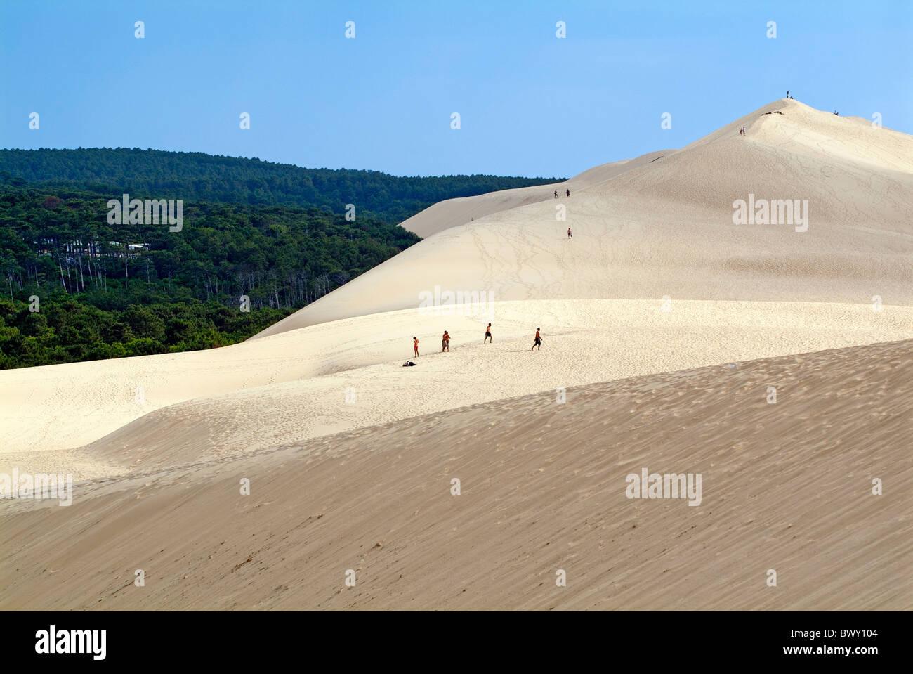 Touristen zu Fuß über die große Düne von Pyla mit dem Landes-Wald im Hintergrund, Frankreich. Stockbild