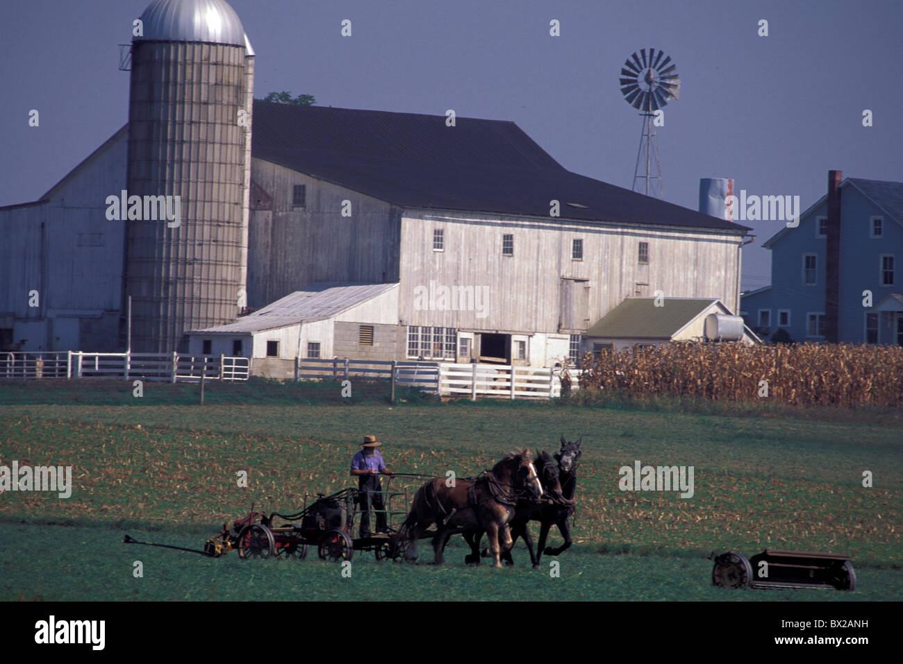 alten altmodischen amische Landwirte Käfige Pferde Feld Bauernhof Landwirtschaft Religion Christentum Lancaster Stockbild